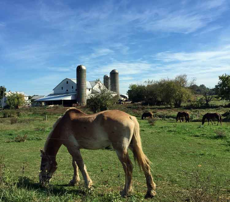 Lancaster PA Amish lodgings