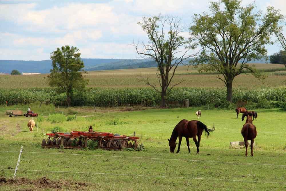 Farm B&B Lancaster PA
