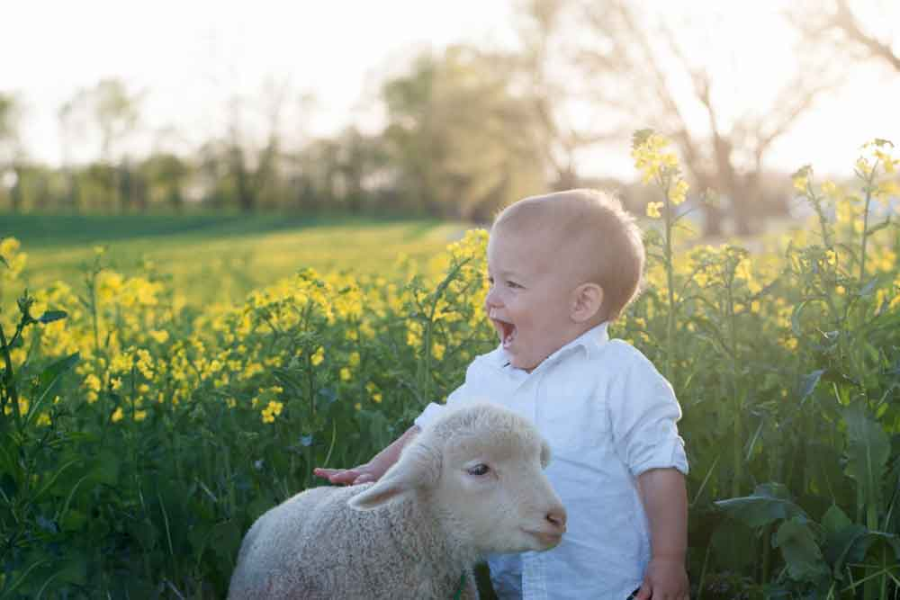 kid friendly farm lodging Lancaster PA